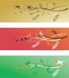 Van de achtergrond valentijnskaart elementen Royalty-vrije Stock Foto