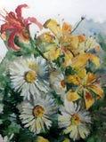 Van de van de achtergrond waterverfkunst van de het boeketbloesem de kleurrijke gele rode roze witte bloemkamille lilyes tuin van Stock Foto's