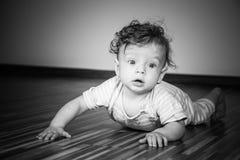 7 van de babymaanden jongen Stock Foto