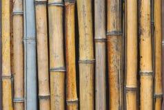 Van de bamboemuur verticaal patroon als achtergrond Stock Fotografie
