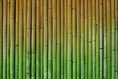Van de bamboeomheining halftone groen als achtergrond en geel royalty-vrije stock foto