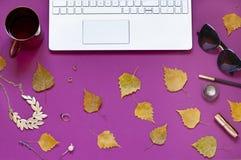 Van de de bedrijfs herfst legt de purpere manier vlakte met gele dalingsbladeren en laptop Stock Foto