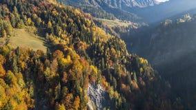 Van de de bergendaling van de herfstkleuren de Alpen Zwitserland Lucht4k stock videobeelden
