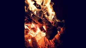 Van de de brandzomer van het kampvuurkamp brandend de brandkampvuur stock videobeelden