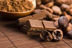 Van de cacao (cacao) de bonen Royalty-vrije Stock Afbeeldingen