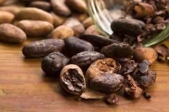 Van de cacao (cacao) de bonen op natuurlijke houten lijst royalty-vrije stock foto