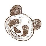 Van de de close-up zwart-wit schets van het pandagezicht het overzichts vectorillustratie stock illustratie
