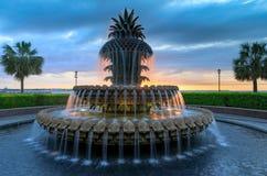 Van de de Ananasfontein van Sc van Charleston het Park van de Waterkant Royalty-vrije Stock Foto