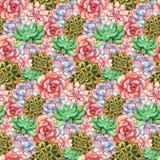 Van de de bloeminstallatie van de waterverf het succulente cactus getrokken naadloze patroon hand vector illustratie