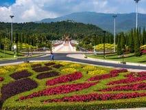 Van de de bloemverandering van de aardtuin MAI Thailand Royalty-vrije Stock Foto