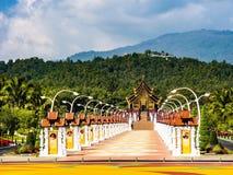 Van de de bloemverandering van de aardtuin MAI Thailand Stock Foto
