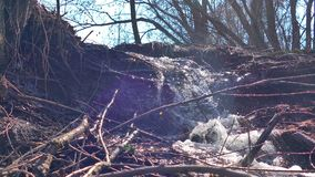 Van de de bomenwaterval van de stroom de bosrivier droge geanimeerde video stock video