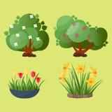 Van de de boom vectorzomer van het bladerenbeeldverhaal de groene achtergrond van de het bladinstallatie Stock Foto's