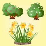 Van de de boom vectorzomer van het bladerenbeeldverhaal de groene achtergrond van de het bladinstallatie Stock Fotografie