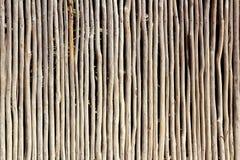 Van de de boomstamomheining van de stok de witte houten tropische Mayan muur Stock Afbeeldingen