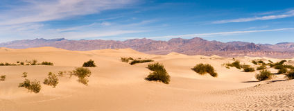 Van de de Doodsvallei van zandduinen het Nationale Park Stock Afbeelding