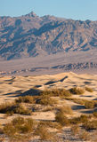 Van de de Doodsvallei van zandduinen van de Woestijnmesquite Vlakke de Wijnstokbergen Royalty-vrije Stock Afbeelding