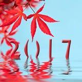 van de de esdoornboom van 2017 de rode kaart van de het bladgroet Stock Afbeelding