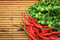 Van de de kleuren groene Nachtschade van de Spaanse peper en van de aubergine torvum Sw Stock Afbeeldingen