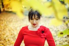 Van de de make-upmannequin van schoonheids het rode lippen krullende haar Mooi donkerbruin model met lang haar stock foto