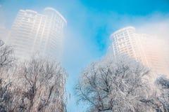 Van de de mistrijp van de sneeuwscène de Dichte Rivier van Songhua stock fotografie