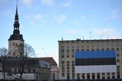 Van de de Onafhankelijkheidsdag van Estland de Parade 2017 Stock Afbeeldingen