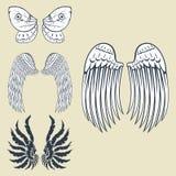 Van de de pignonvogel van de vleugels de dierlijke veer van de de vrijheidsvlucht van het de vredesontwerp natuurlijke vectorillu vector illustratie