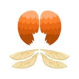 Van de de pignonvogel van de vleugels ontwerpen de dierlijke veer de vrijheidsvlucht en de natuurlijke vrede van het haviksleven  stock illustratie