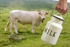 Van de de pottenlandbouwer van de melk de handkoe in weide Stock Foto's