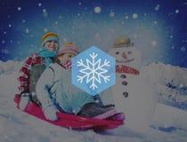 Van de de Sneeuwvlokblizzard van de sneeuwwinter Kerstmisconcept Stock Fotografie