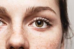 Van de de sproetenvrouw van de ogenvrouw Jong mooi het gezichtsportret met gezonde huid Royalty-vrije Stock Afbeelding