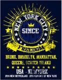 Van de de Stadsmens van New York van de de Universiteitst-shirt het Grafische Ontwerp Stock Foto