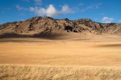 Van de de Valleilandbouwgrond van klippenbluffs Vreedzaam het Noordwestengrondgebied Royalty-vrije Stock Foto's