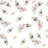 Van de de verf roze bloem van de pastelkleurwaterverf het hand getrokken naadloze patroon vector illustratie