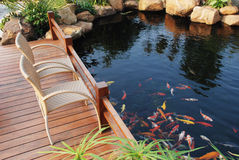 Van de de villatuin van de familie de vissenvijver Stock Fotografie