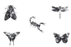 Van de de vlindermot van het insectenpictogram vastgestelde de schorpioenlibel royalty-vrije illustratie