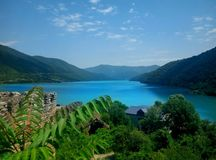 Van de de zomeraard van Georgië het meerbergen Royalty-vrije Stock Foto