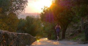 Van de de zonsondergang lichte stad van Malaga van het gibralfarokasteel oude de wegmening 4k stock video
