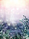 Van de flora abstract patroon als achtergrond. Stock Afbeelding
