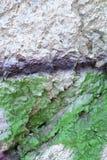 Van de Grunge groene verf textuur als achtergrond Royalty-vrije Stock Afbeeldingen