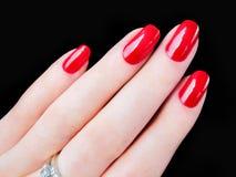 Van de handvingers van de mooie mooie vrouw sexy rode de vingernagelsspijkers Stock Foto