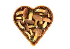 Van de het eekhoorntjesbroodboleet van paddestoelenpaddestoelen badius van Xerocomus in geïsoleerde de mand van de hartvorm Royalty-vrije Stock Afbeeldingen