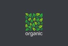 Van de het Embleem vierkant vorm van bladereneco het ontwerp vectormalplaatje Organisch Natuurlijk het conceptenpictogram van Log Stock Fotografie