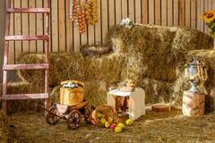 Van de het fruitstalletjekar van het hooilandbouwbedrijf van het de karvat de schuur Zonnige dag stock afbeeldingen