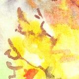 Van de het gebladertevlam van de waterverfherfst abstracte de textuurachtergrond Stock Foto's