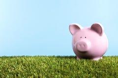 Van de het gras blauwe hemel van het spaarvarken groene het exemplaarruimte, het concept van pensioneringsbesparingen Stock Foto's