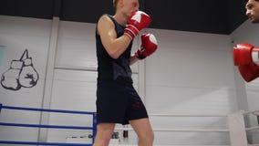 Van de het Haarsport van de vechtersaanraking de Oefening van de de Trainingbokser stock video