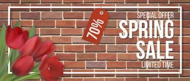 Van de het kader de rode baksteen van de de lenteverkoop rode tulp stock illustratie