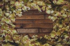 Van de het kadervalentijnskaart van bloemblaadjesbloemen de dagprentbriefkaar Royalty-vrije Stock Afbeeldingen