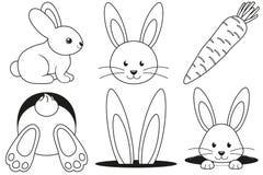 Van de het konijnwortel van de lijnkunst zwart-witte het pictogramreeks royalty-vrije stock afbeeldingen